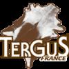 TERGUS